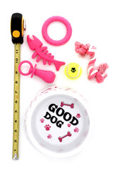 Good Dog Food Bowl and Toys Set