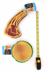 Steak or Hamburger Squeaky Dog Toy Showing Ruler