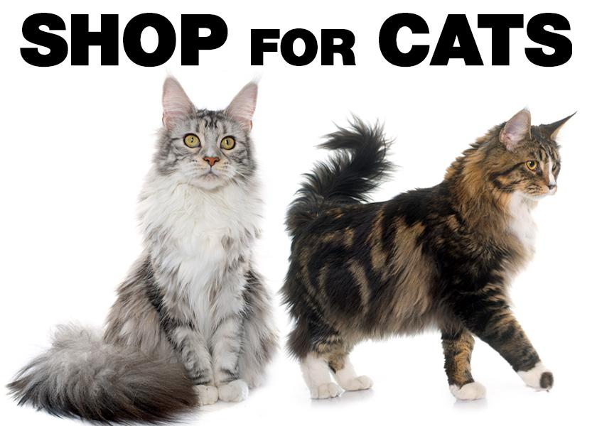 Shop for Cat Supplies