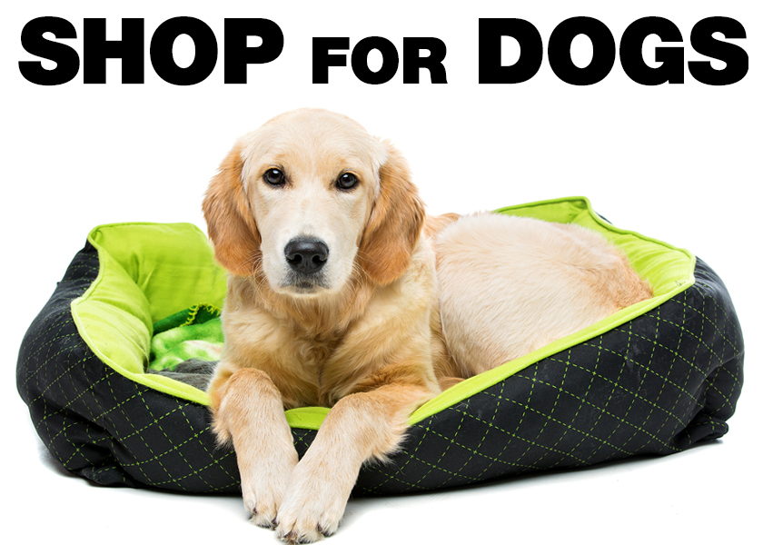 Shop for Dog Supplies