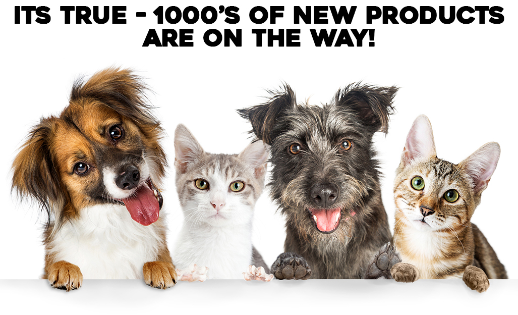 Shop New Arrivals Cat and Dog Supplies