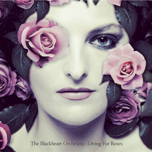 The Blackheart Orchestra - Diving For Roses