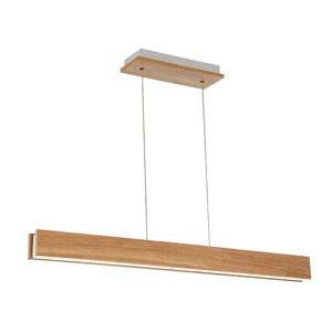 Home Office Linear Suspension