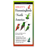 Sibley's Hummingbirds of North America (Guide)