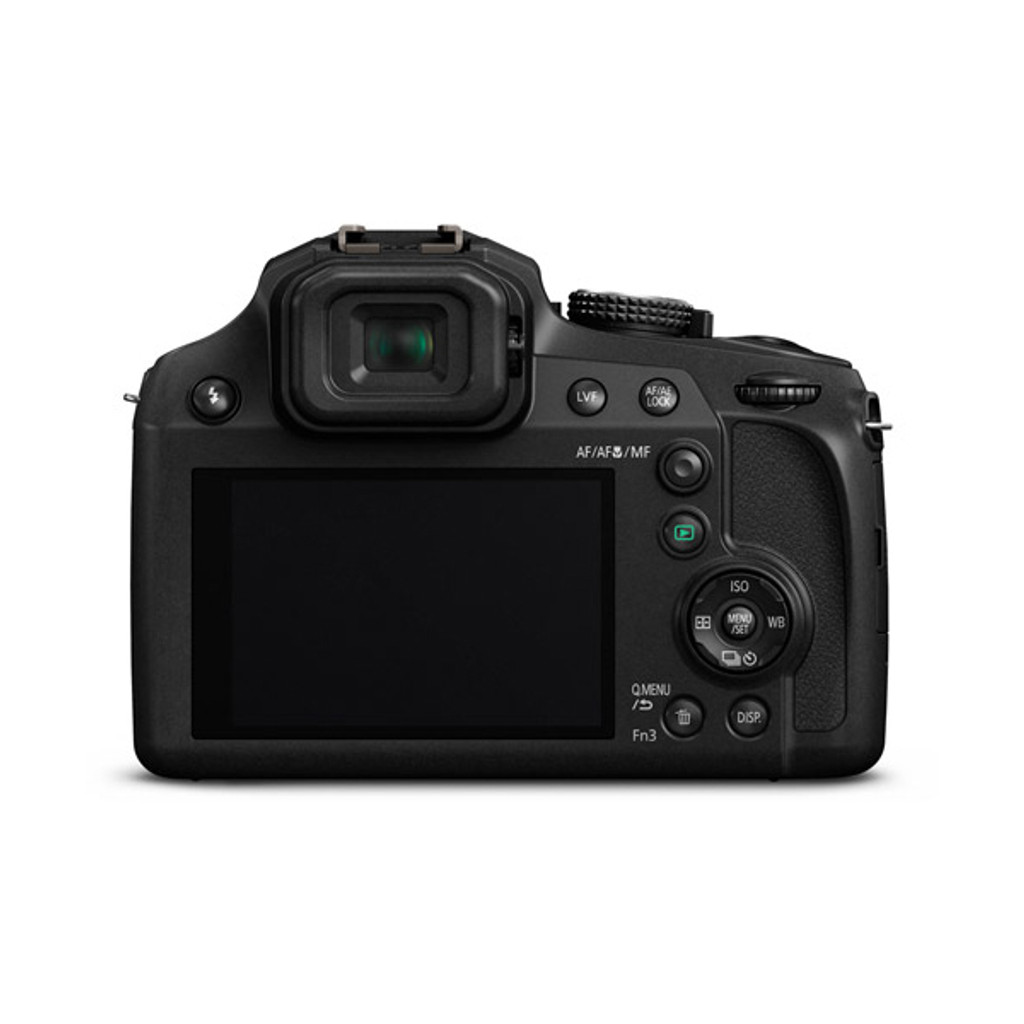 Lumix DMC-FZ80 - Save $70