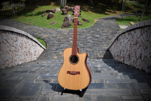 Trevii D1002 w/ Artec preamp (Full Solid)