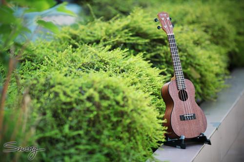 Swing Ukulele C-11 Concert