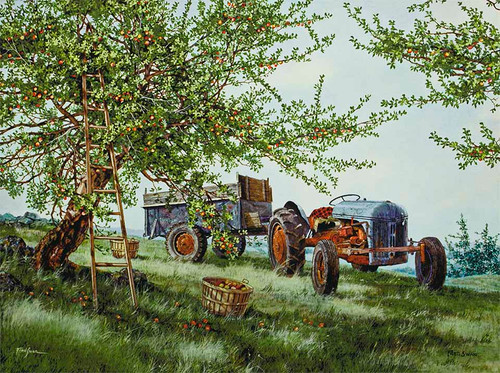 Gathering Apples