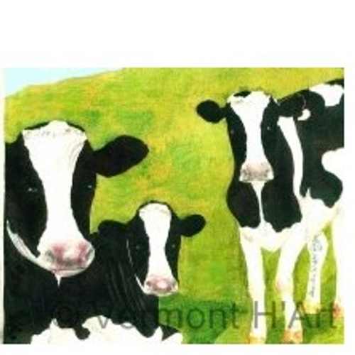 Cows of Vermont