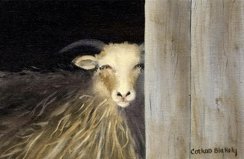 Weston Sheep