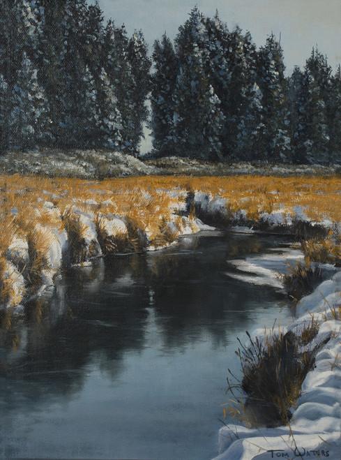Winter Marsh Study