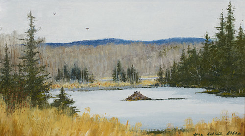 Lewis Vermont