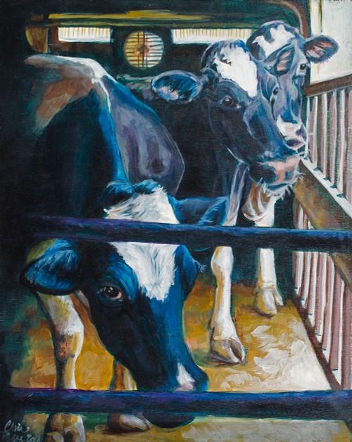 VT Dairy Life