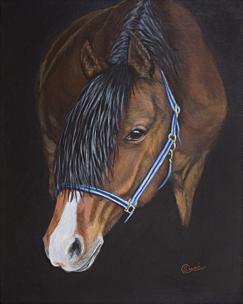 Belgian Horse Emerging - Print