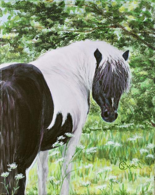 Dream Pony - Print
