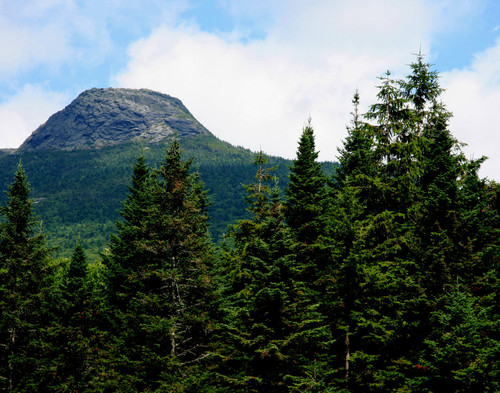 Camels Hump - Huntington, VT
