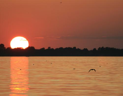 Champlain Sunset - Swanton, VT