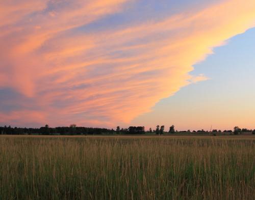 Meadow Sunset - Swanton, VT