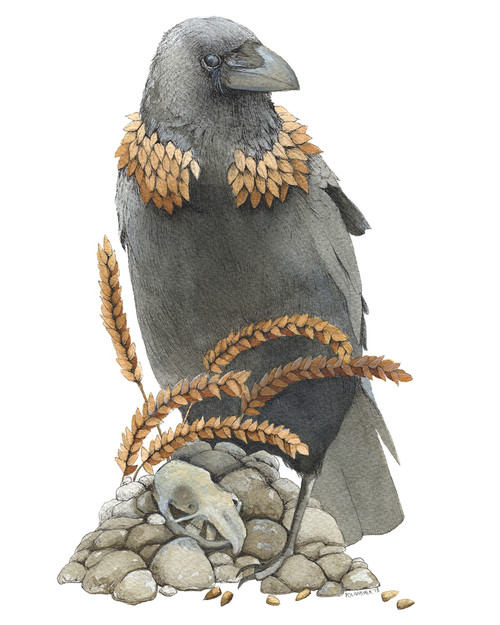 Crow and the Wheat