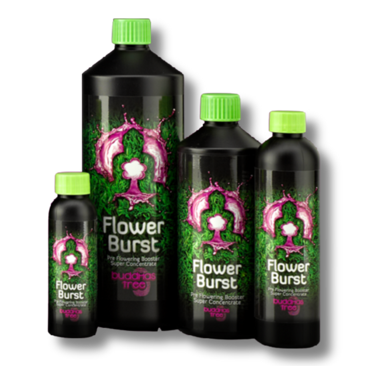 Flower Burst is a unique product from Buddhas Tree that has been specifically created for use during your plants pre-flowering and early flowering stage.