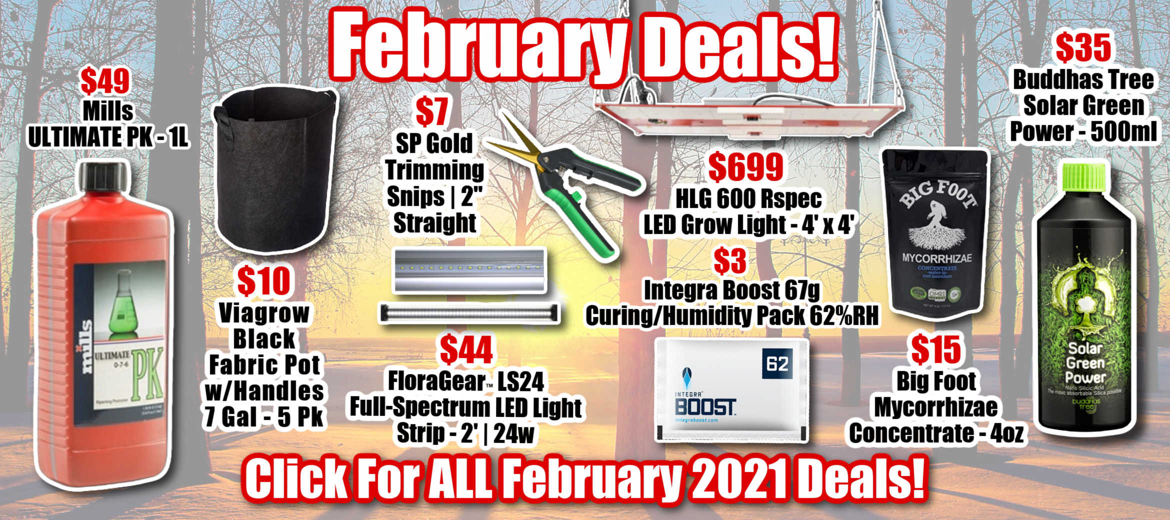 February Deals Monthly Specials