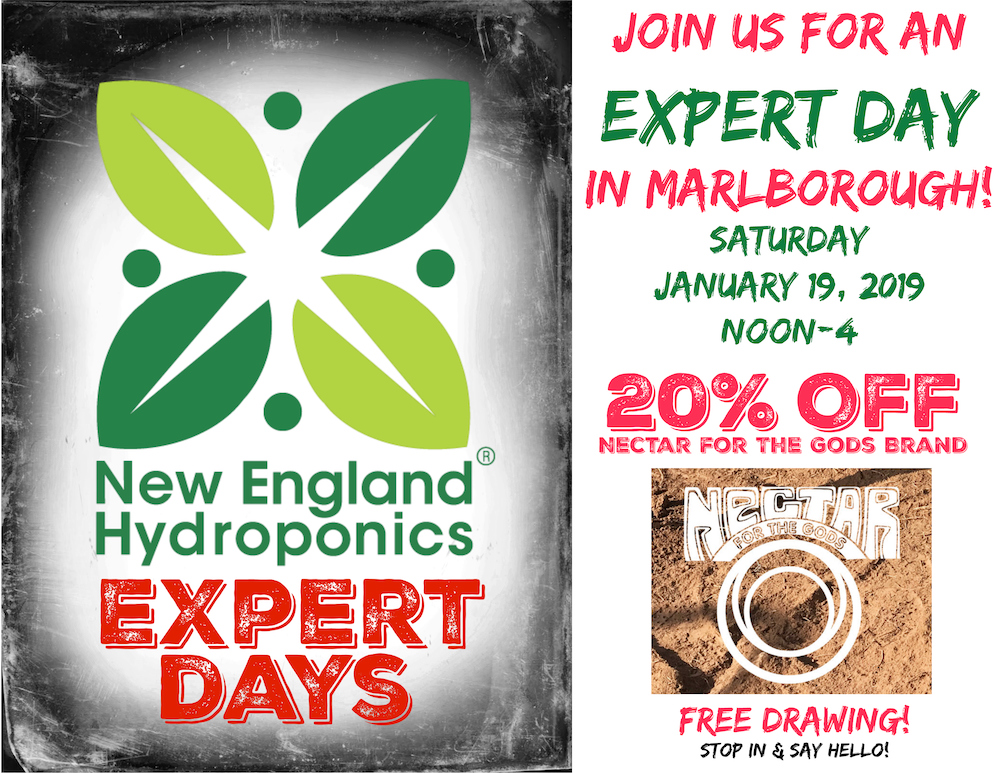 January 19 Expert Day in Marlborough: Nectar For The Gods