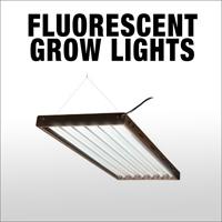 neh-web-category-flur-lights.jpg