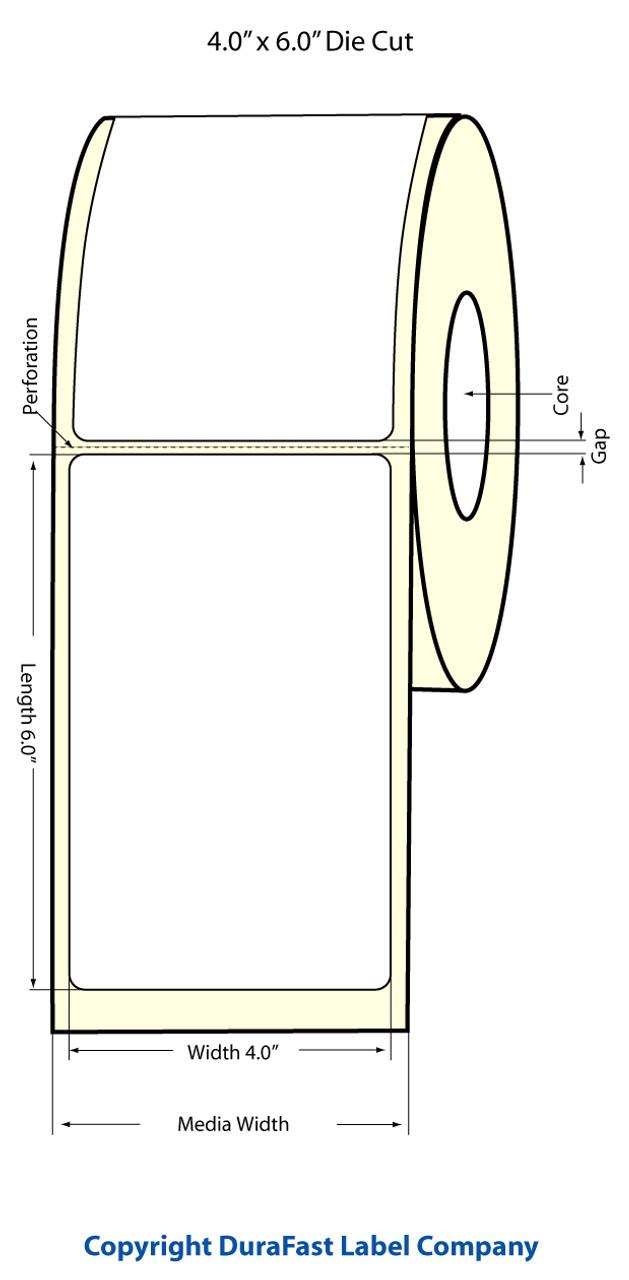 TM-C3500 4x6.5 Matte BOPP Diecut LBL Rol