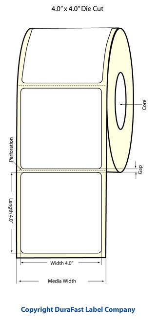 "TM-C3500 4"" x 4"" Inkjet (1A) Matte Paper Label 290/Roll  - 812021"