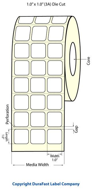 """TM-C3500 1"""" x 1"""" Inkjet (3A) Matte BOPP Label 3200/Roll  - 814006"""