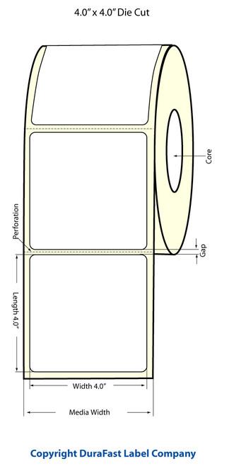 """TM-C3500 4"""" x 4"""" Inkjet (1A) Matte BOPP Label 290/Roll  - 814021"""