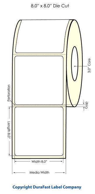 "LX900 8"" x 8"" Inkjet High Gloss Paper Labels 300/Roll  - 74814"