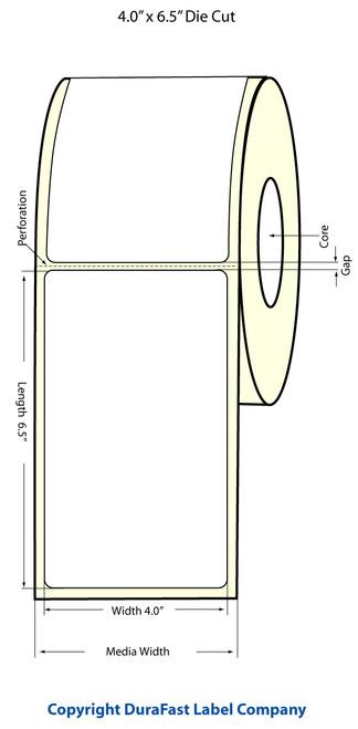 "TM-C3500 4"" x 6.5"" Inkjet (1A) High Gloss Paper Label 180/Roll  - 811023"