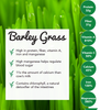 Barley Grass Powder - Organic - USA Grown