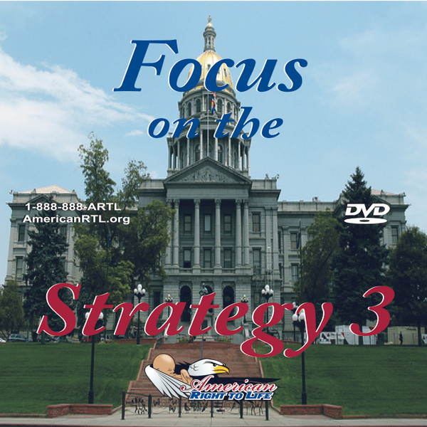 Focus on the Strategy III