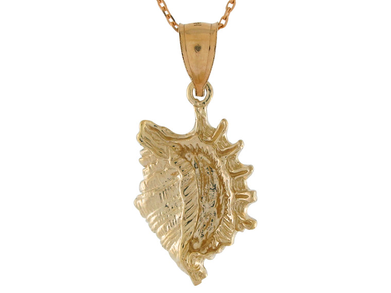 Dazzling Unique Seashell Conch High Polish Pendant (JL#10768)