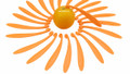 plastic orange peelers