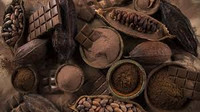 chocolate cocoa perfume samples