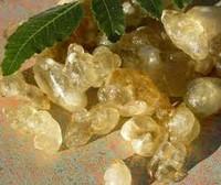 Frankincense samples & decants