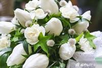 White floral fragrance sample decant