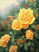 Rose - A Beginner's Guide to Rose Sample Set - 3 Samples