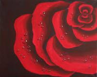 Rose Perfumes - Velvet Luxury Rose Sampler - 8 Samples