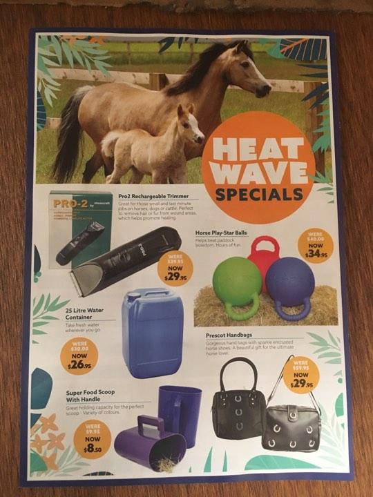 heat-wave-catalogue-sale.jpg