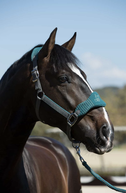 Le Mieux Vogue Fleece Headcollar & Lead Rope - Peacock/Grey