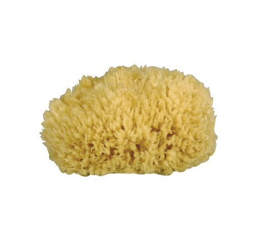 Gerby natural sponge - L