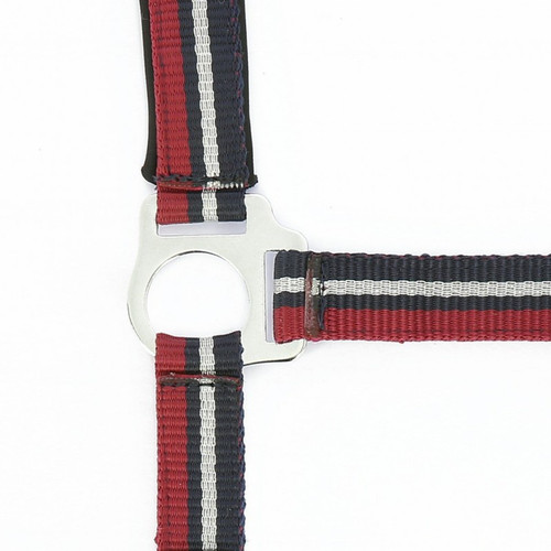 Norton Brillant Halter and Rope