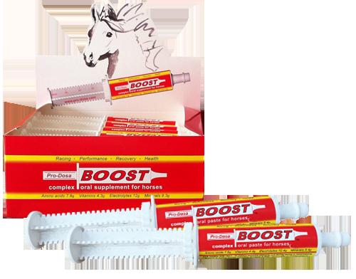 Pro Dosa Boost - 80gm