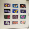 NEVIS COLLECTION, 1984-1990 Mint NH Scv Apprx.$125