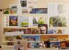 UZBEKISTAN ( #1-2014) Sets and Single Issues Flora , Culture, Space ,Fish, Animals OUR ORIGINAL RETAIL  >$230