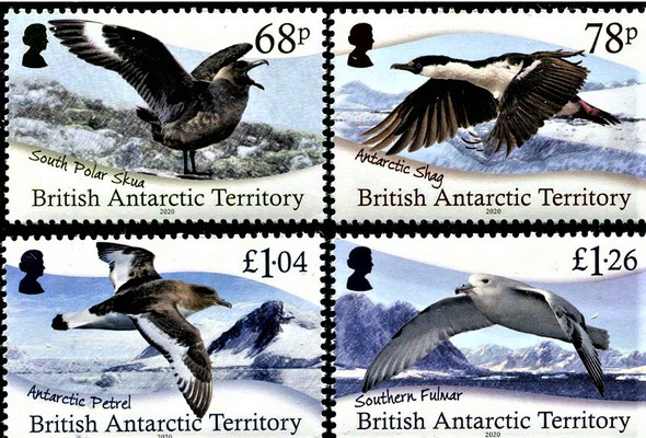 BR. ANTARCTIC TERRITORY (2020)- Sea Birds (4v)